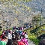 Exito de la Carrera Solidaria 2016